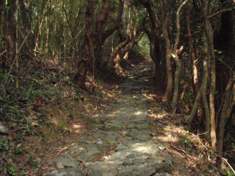 楽しく学べる人生という旅-izawa3