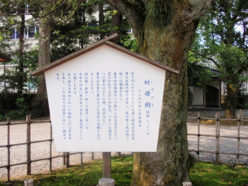 楽しく学べる人生という旅-oyamajinja2