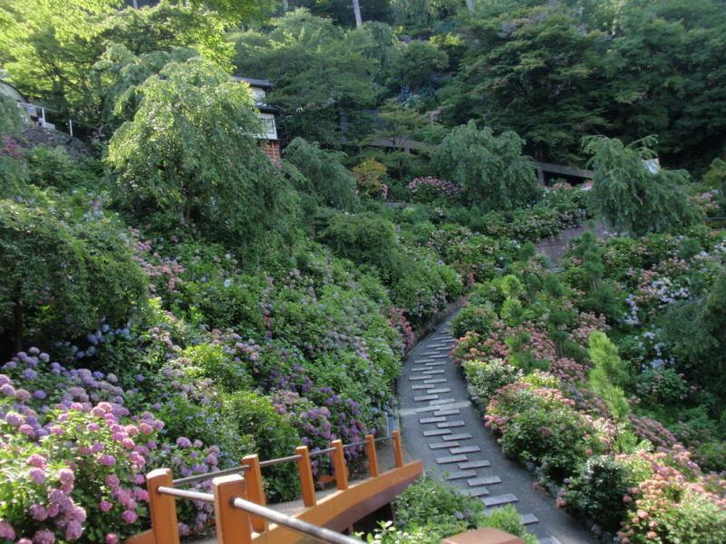 楽しく学べる人生という旅-yoshiminedera5
