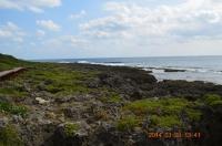 海濱棧道から海景色140128