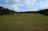 入口の草原に戻る140128