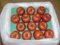 青森りんご140120