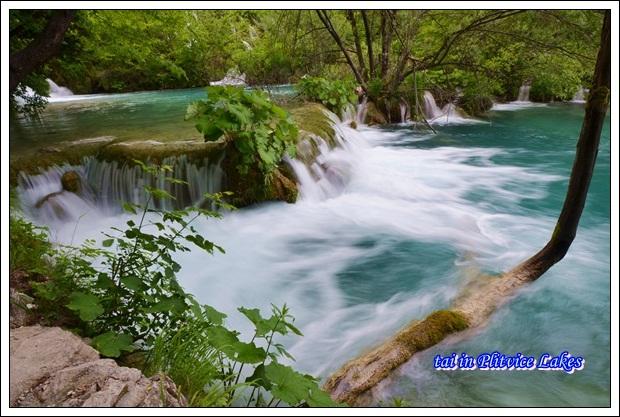 TAI_1582_20131111131518c41.jpg