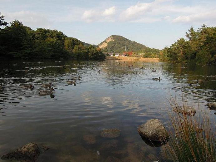 DSCN7011池風景