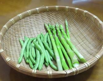 インゲンとアスパラガス収穫物