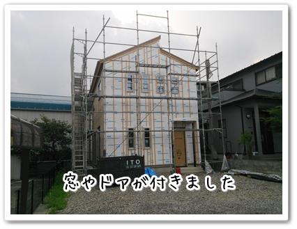 DSC_0209 (1)