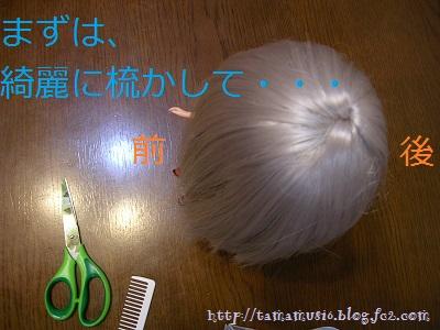 DSCN5631a_20130422210440.jpg