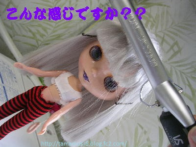 DSCN5649a.jpg