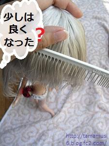 DSCN7022a_20130427223233.jpg