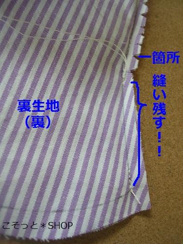 DSCN8436a.jpg