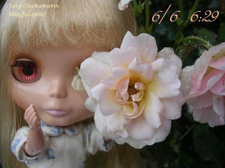 DSCN9402a.jpg
