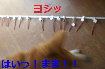 DSCN9453a.jpg