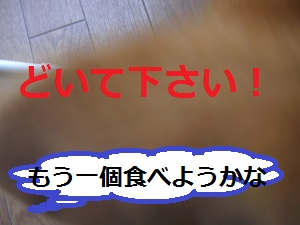 DSCN9466a_20130506222008.jpg