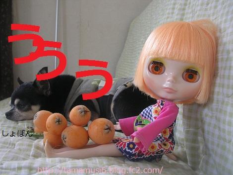 DSCN9808a.jpg
