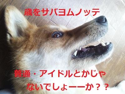 DSC_0224a.jpg