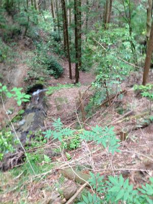 s-konngouIMG_0286.jpg