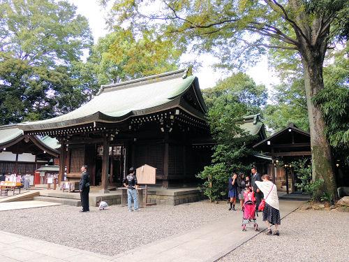 130929kawahikawa14.jpg