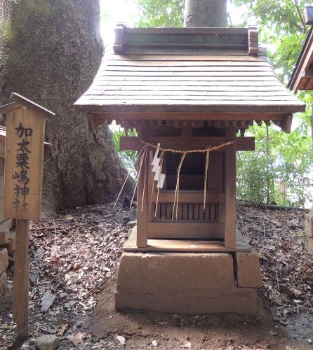 130929kawahikawa39.jpg