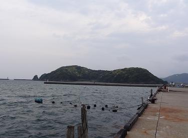 イカと出逢う予定の場所