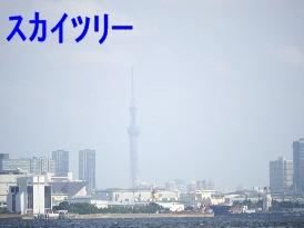 P1150524.jpg