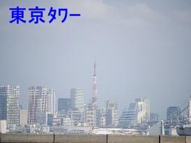 P1150525.jpg