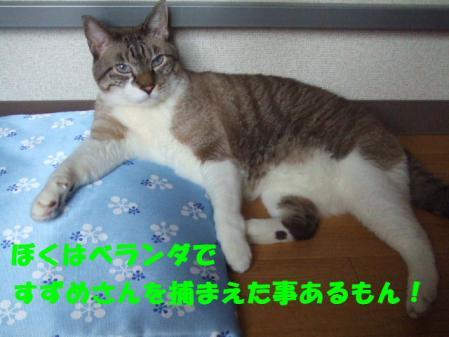 DSCF102211.jpg