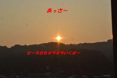 018_20130709101853.jpg