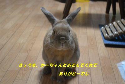 041_201309281834569f4.jpg