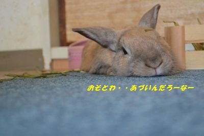 094_20130810090807eda.jpg