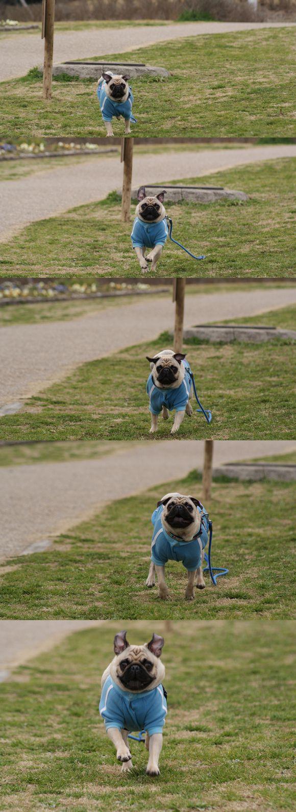 たっちゃん、こっち向いて!