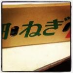 shimonitabegi0118.jpg