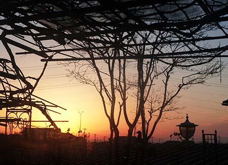 7日 日の出