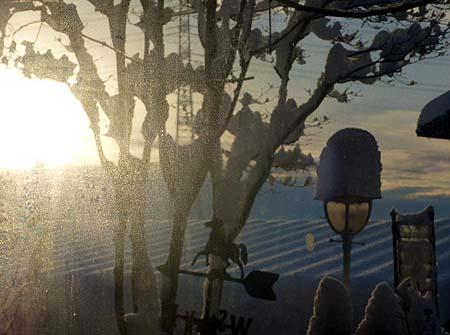 今朝の陽ざし