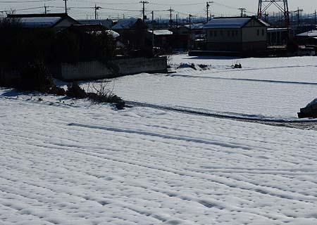 まだ・・・雪景色
