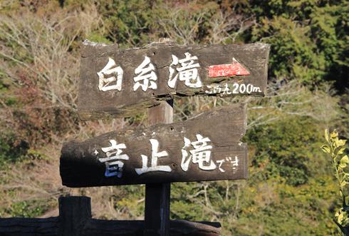 富士山白糸の滝-2