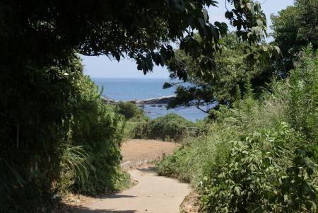 大浦海岸 1