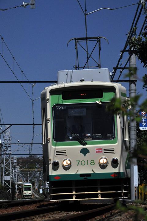 DSC_5587.jpg