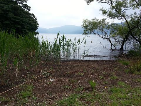 芦ノ湖 (2)