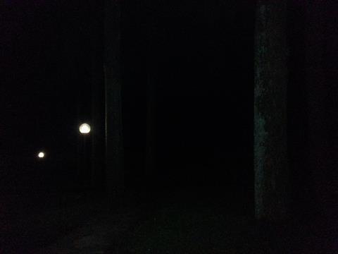 夜の芦ノ湖 (1)