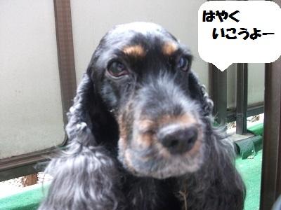 2013_04064月①0051