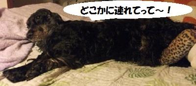 2013_05055月①0091