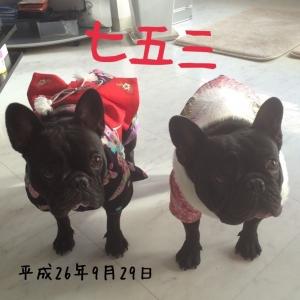小梅&ミック2