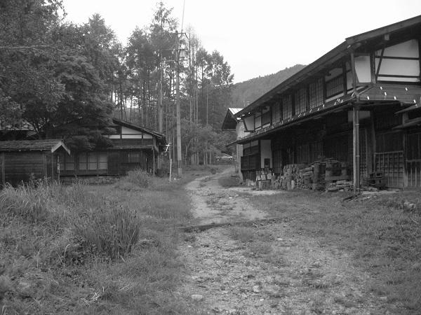 IMG_1939.jpg