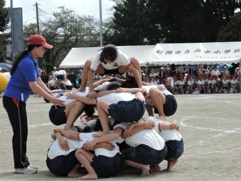 運動会 府中小① 組体操