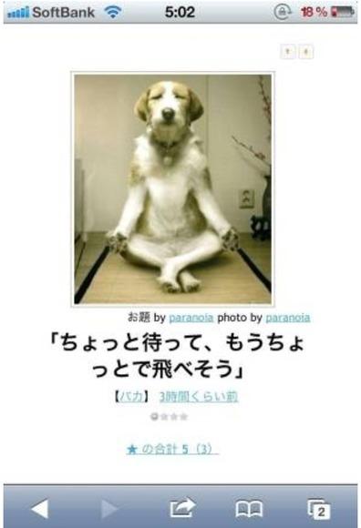 トアル犬の瞑想image