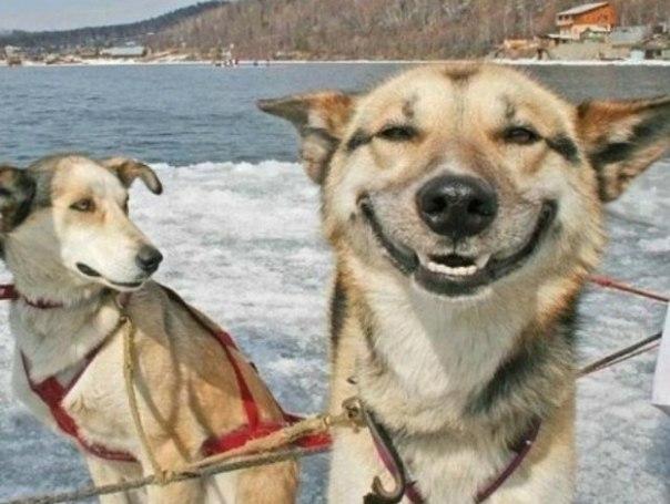 とある飛びっきりの笑顔なimage