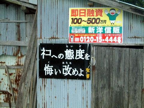 ボケて(ネコへの態度を悔い改めよ)image