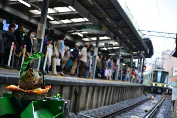 2013年6月12日 江ノ島電鉄線 鎌倉 2000形2001編成