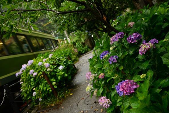 2013年6月12日 江ノ島電鉄線 長谷~極楽寺