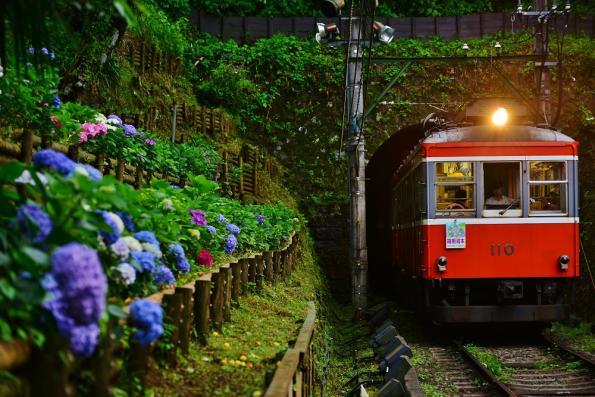 2013年7月5日 箱根登山鉄道線 仙人台(信)~上大平台(信) モハ1形103-107+モハ2形110